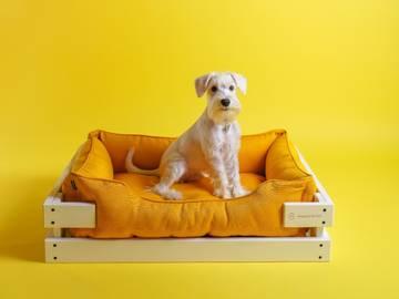 Лежак dreamer white + mustard фото