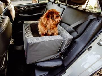Автомобильное кресло для собак discovery фото