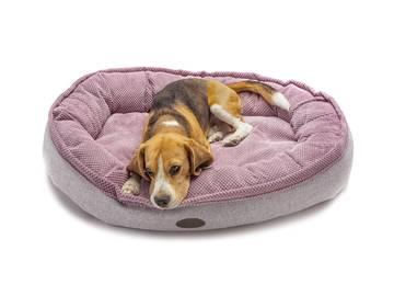 Овальный лежак для собаки фото