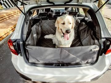 Автогамак для собак в багажник saver фото