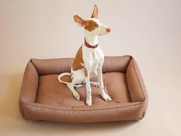 Лежак для собаки sofa cacao фото