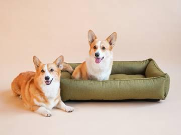 Лежак для собаки sofa olive фото