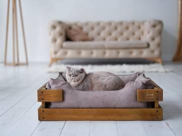 Кровать для кота фото