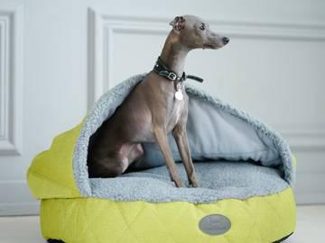 Лежак для левретки фото
