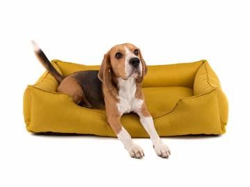 Спальное место для собаки без деревянного каркаса по цене 0 грн.