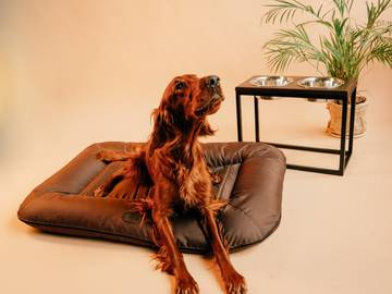 Двухсторонний лежак-понтон lounger brown waterproof фото