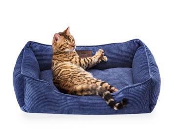 Диван для кошки фото