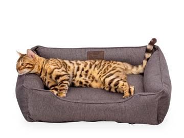 Лежак для котов dreamer gray фото