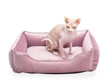 Лежак для котов dreamer velur pudra фото
