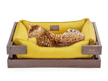 Лежанки для котов купить фото