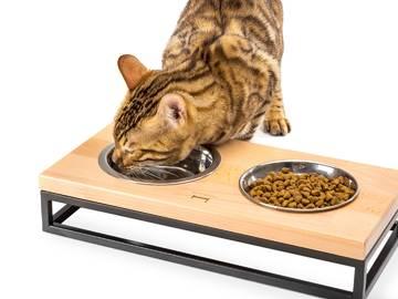 Миски для кошек и котов фото