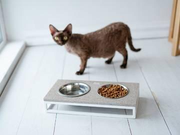 Миски для котов фото