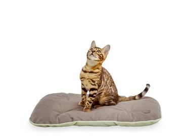 Подстилка для кошки tomas gray фото