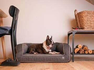 Диван для собак sleeper grey фото