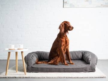 Диван для собак sleeper gray  по цене 0 грн.