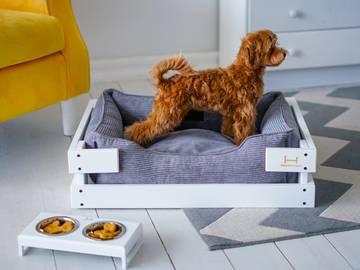 Купить кровать для собаки фото